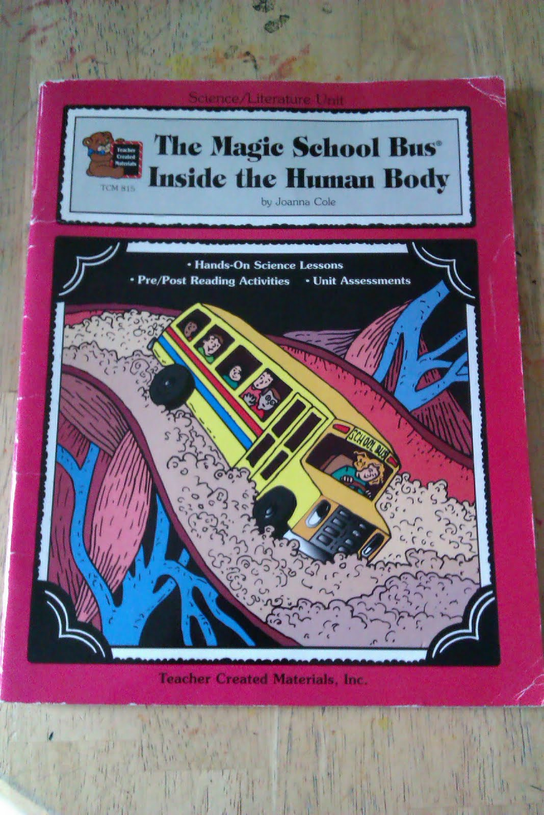 Bugs Boys And Boo Boos The Magic School Bus A Journey