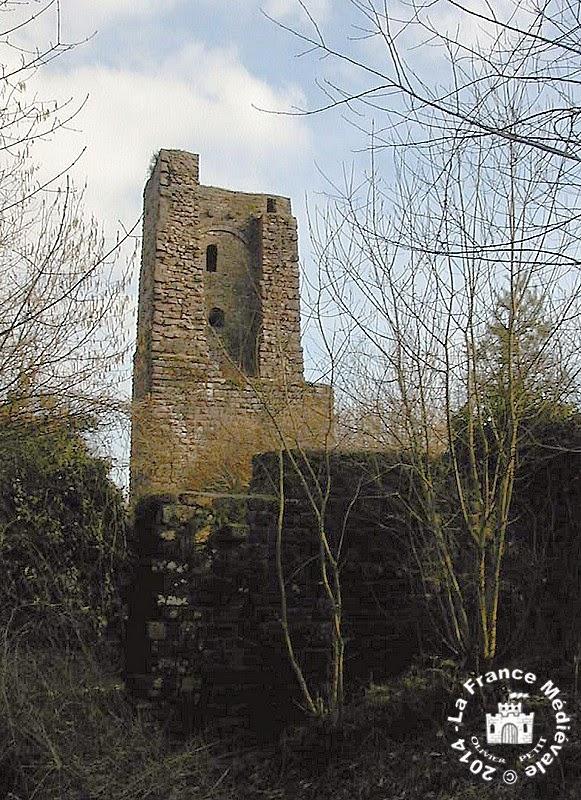 HAEGEN (67) - Château du Grand Géroldseck