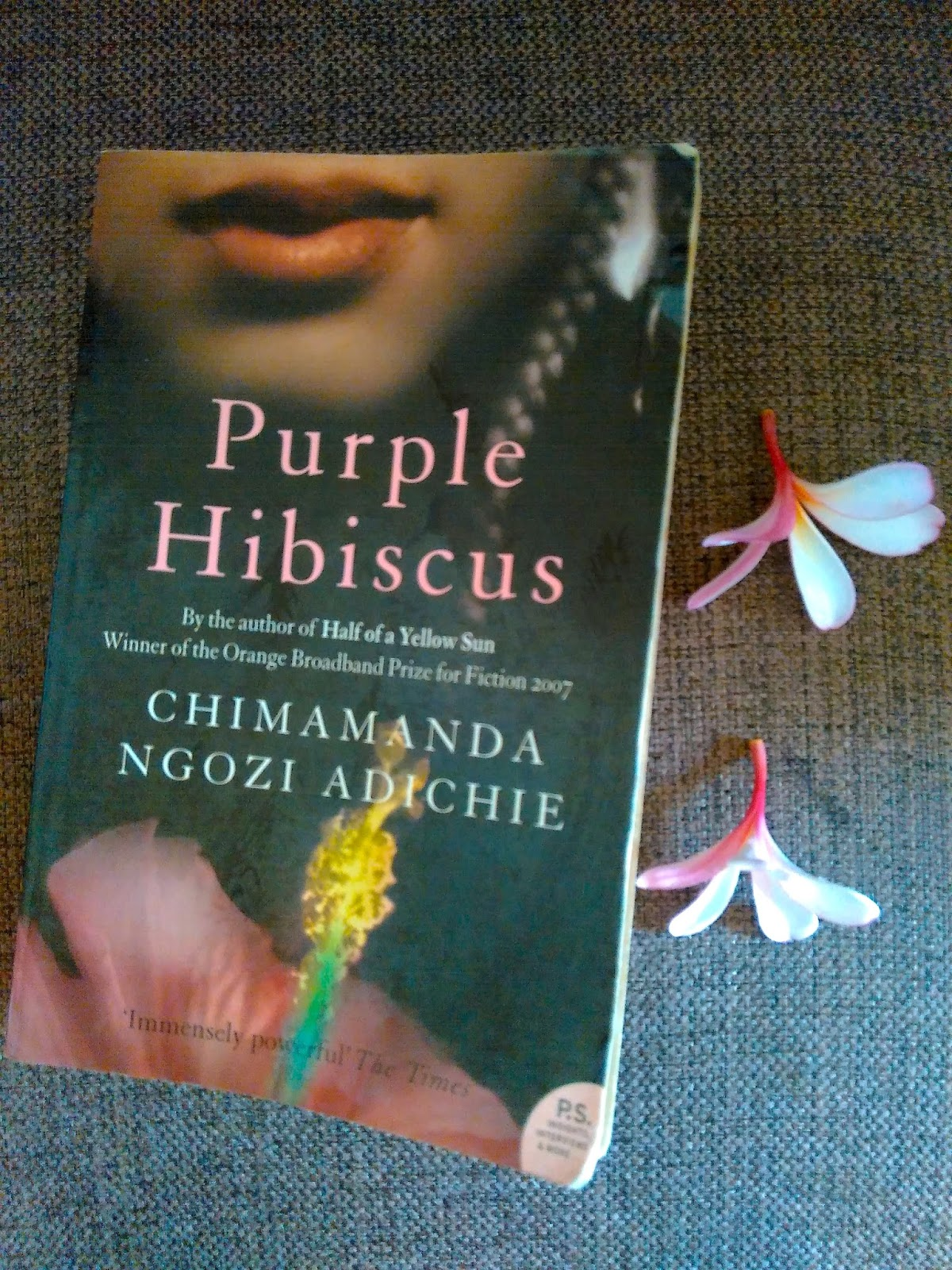 Truly Transporting Prose Purple Hibiscus By Chimamanda Ngozi