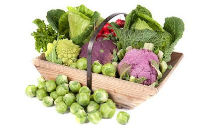 Los alimentos más poderosos de lucha contra el cáncer