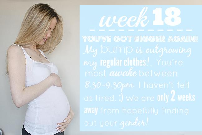 18 weeks pregnant,
