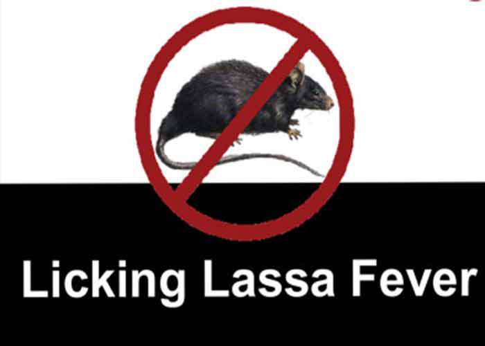 Lassa fever returns, kills 4 in Bauchi