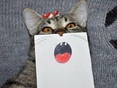 chat avec dessin