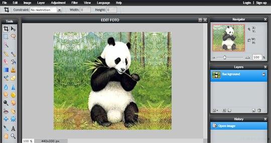 Edit Foto Dengan Pixlr Editor Online