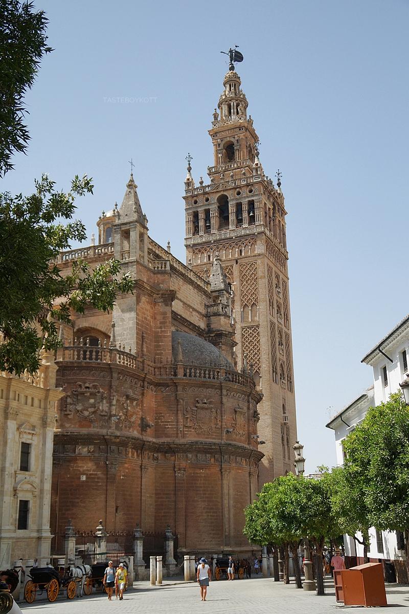 Cathedral and Giralda tower in Seville, Spain // Giralda und Kathedrale in Sevilla, Spanien   Sevilla im Sommer bereisen