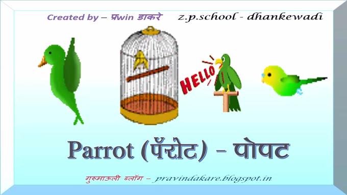 इंटरॅक्टिव्ह व्हिडिओ - पक्ष्यांची ओळख with spelling & animation