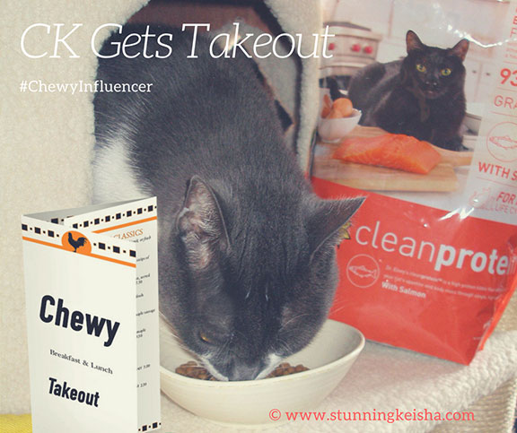 CK Gets Takeout #ChewyInfluencer