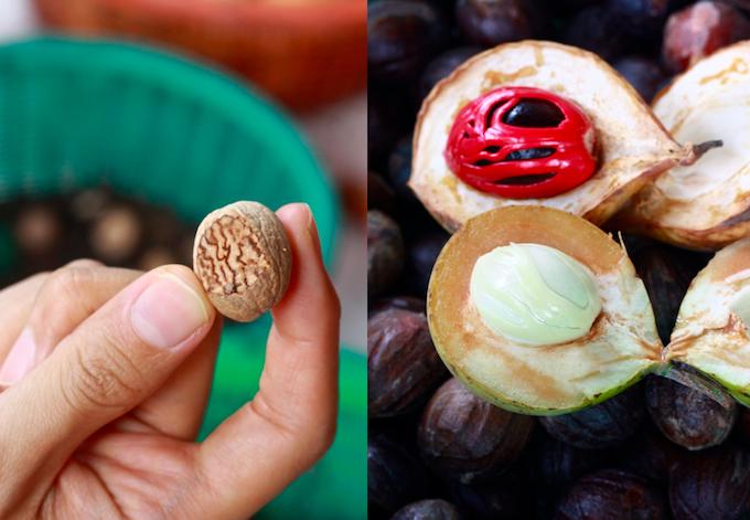 nutmeg seed for grating, white nutmeg for oil, and brown nutmeg for cooking at farm