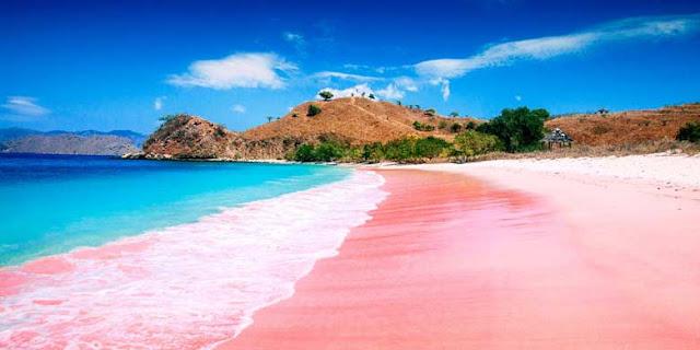 Pantai Pink - 3H2M Pulau Komodo Lebaran 2018 - Salika Travel