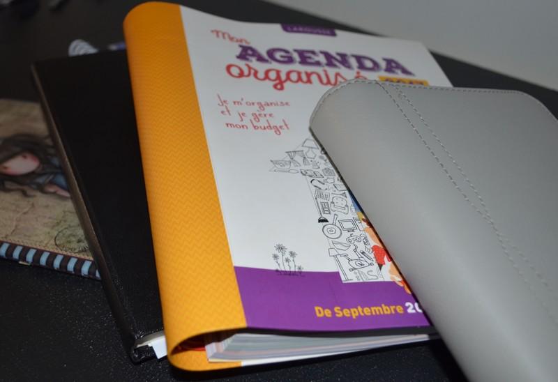 Mon Bullet Journal surnommé Bujo