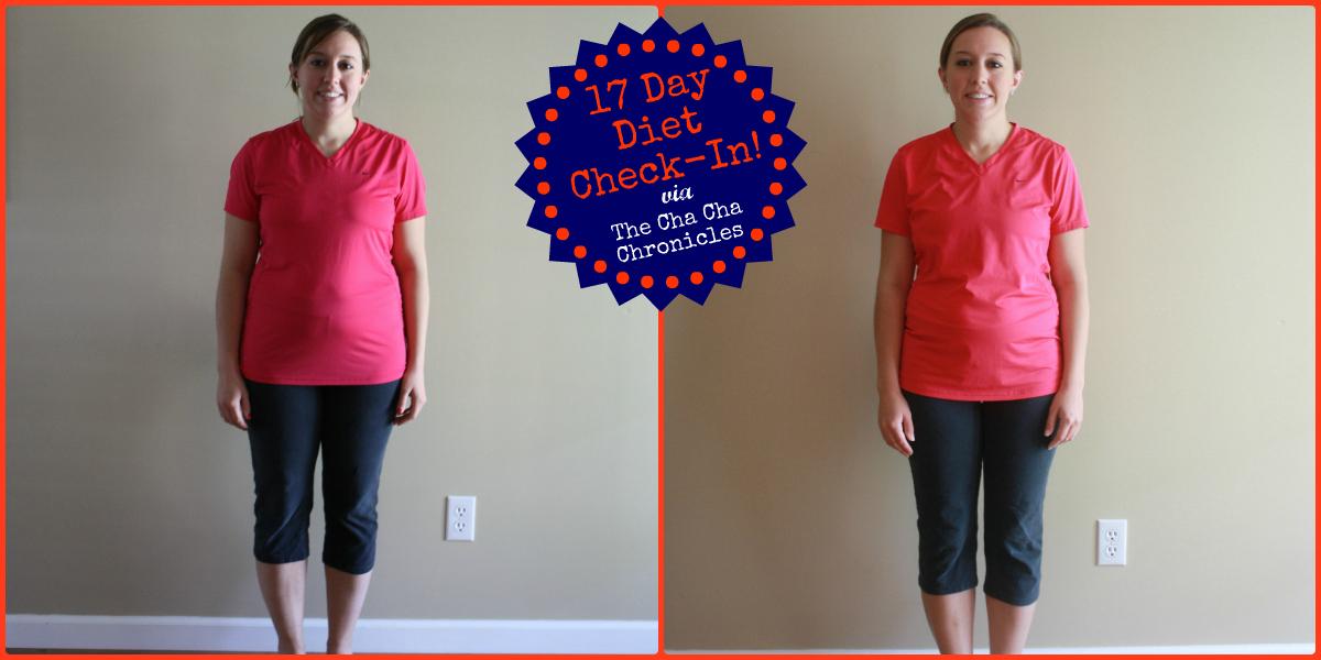 the 17 day diet workbook pdf