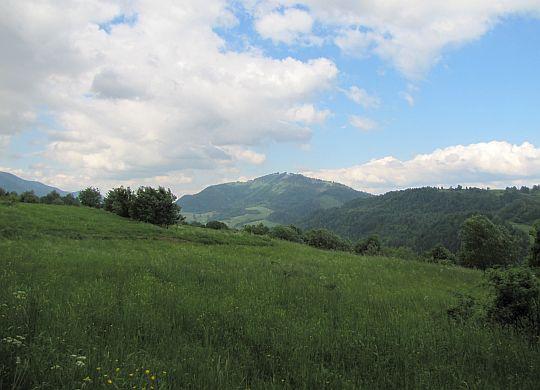 Mravečník (993 m n.p.m.) ze szlaku na Pupov.