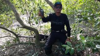 Mangrove Sarang Elang