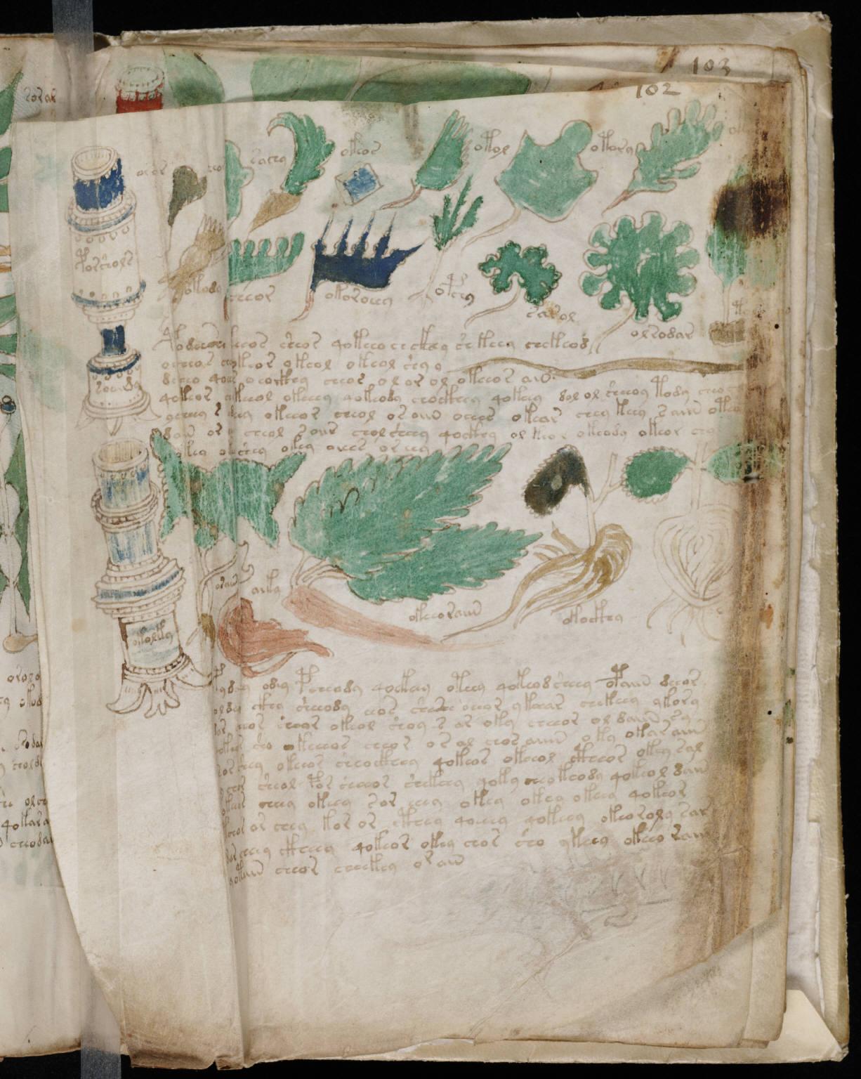 manuscrito179