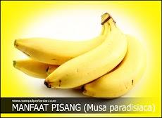 6 Manfaat pisang yang belum kita tahu