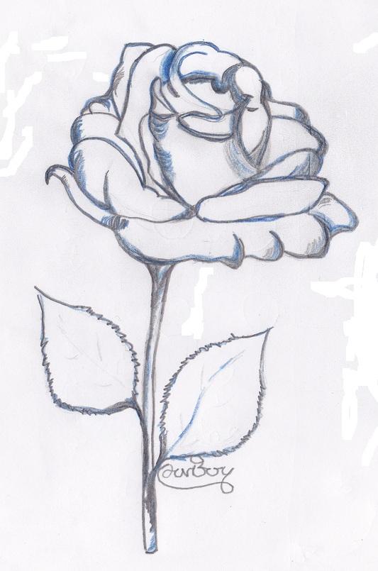 Eccezionale Arte semplice e poi: Il disegno dei fiori visti anche attraverso l  QO34