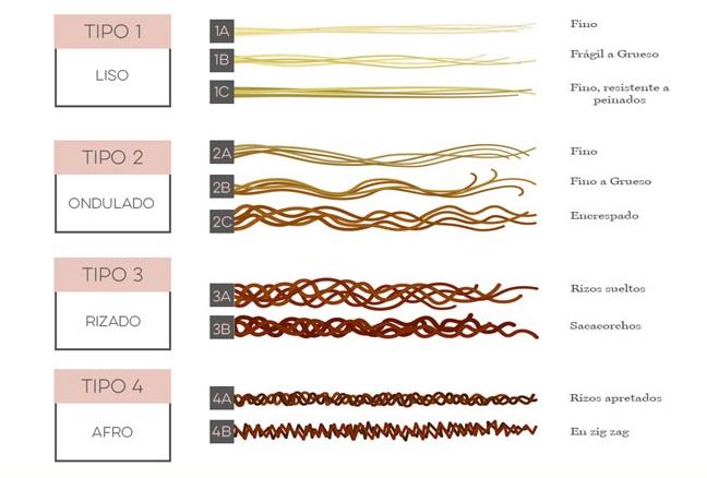 Andre Walker creo esta clasificación de tipos de cabellos y sus texturas  para poder usar los productos que mejor se adapten a cada tipo. c6e50c7fccf0
