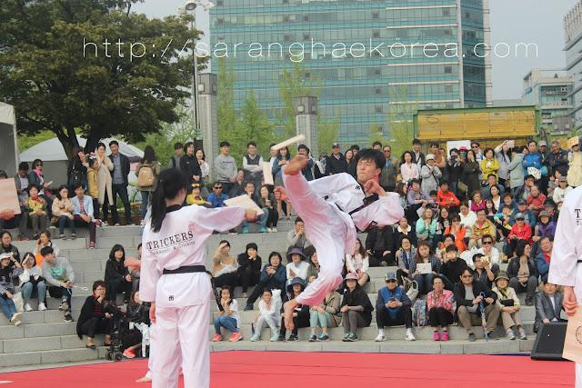 taekwondo show at the festival