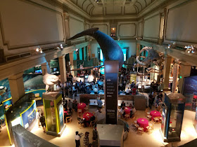 Drinking beer at Smithsonian Natural History
