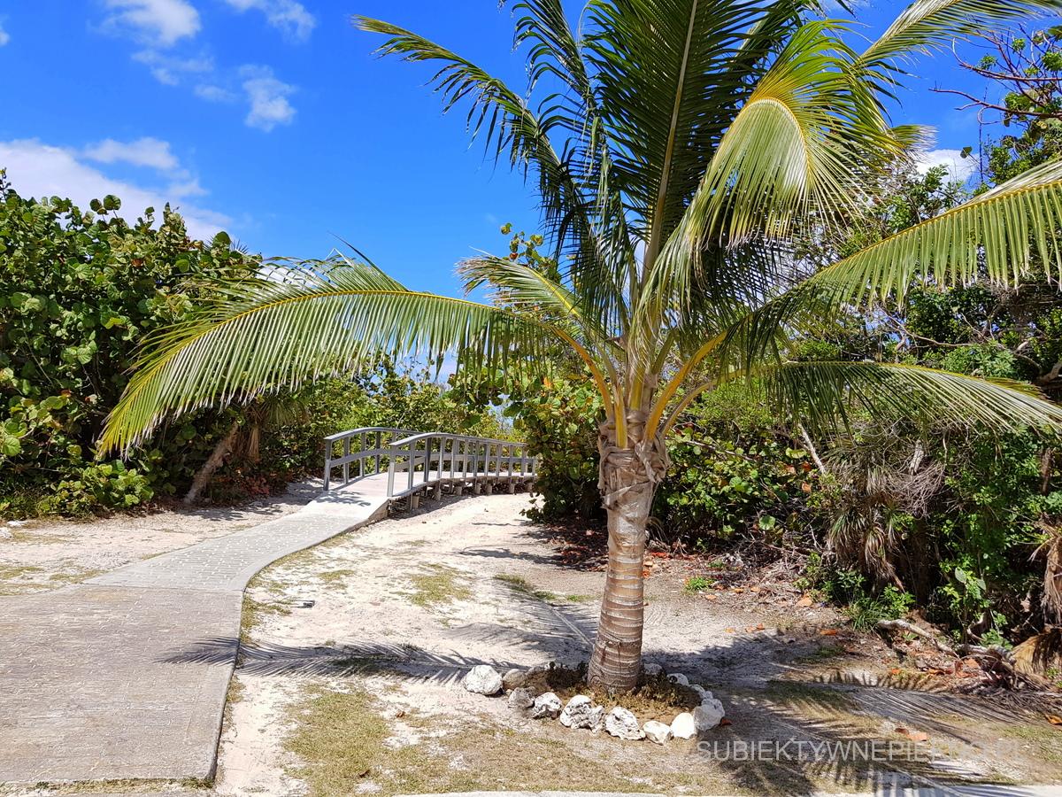 Kuba jakiej nie znacie, czyli prawdziwe oblicze karaibskiego raju