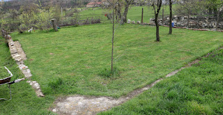 Nicely cut grass