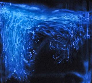 Bagaimana Cara Organisme Bioluminescence Dapat Bercahaya Bagaimana Cara Organisme Bioluminescence Dapat Bercahaya ?