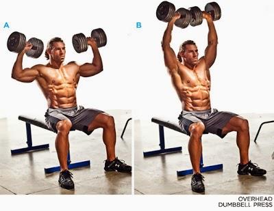 تمرين الدملبز من الجلوس لتدريب عضلات الاكتاف فديو