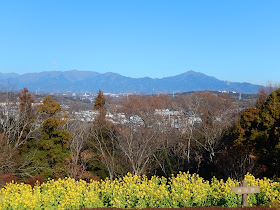 吾妻山公園からの丹沢
