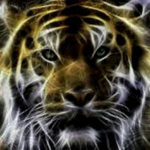 Batu Mustika Khodam Macan Penakluk Ampuh