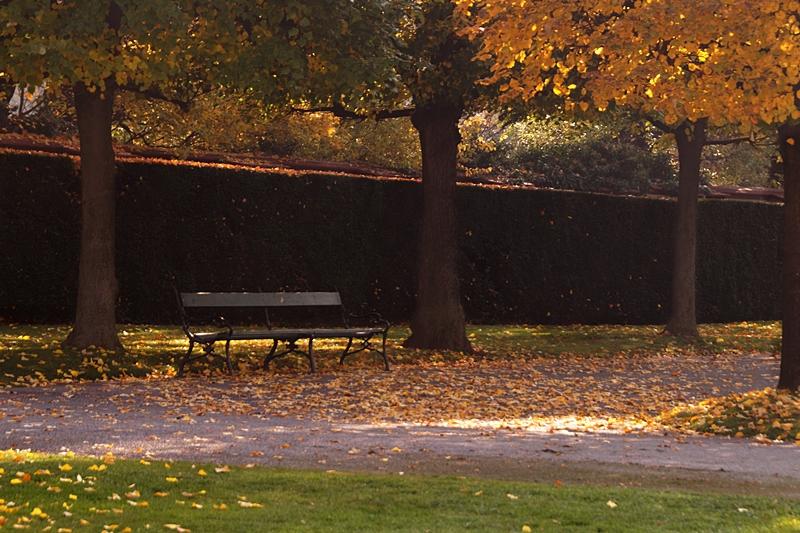 Schloss Belvedere und Gartenanlage, Wien im Herbst