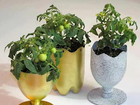 Begini Cara Membuat Pot Bunga Cantik dari Botol Plastik
