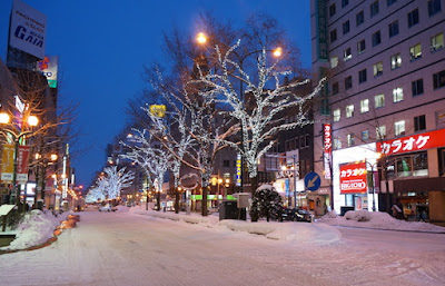 Susukino Street Japan