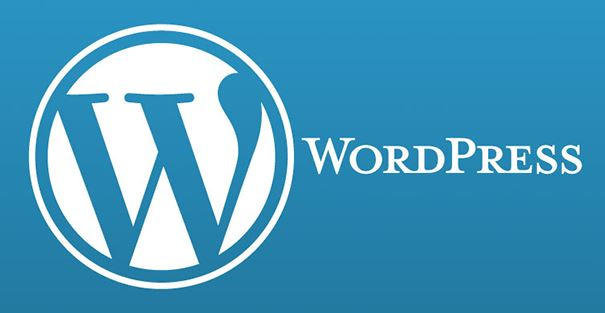 Wordpress en iyi seo eklentisi