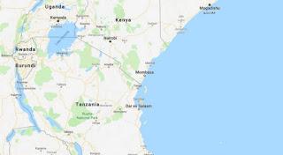 تنزانيا ترفض الانتقادات الأمريكية للانتخابات المحلية