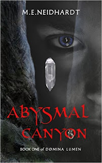 Abysmal Canyon - a sci-fi fantasy thriller by M.E. Neidhardt