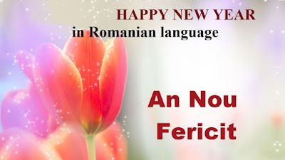 Romanian New Year 2017