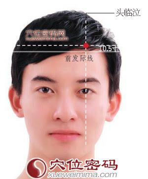 頭臨泣穴位 | 頭臨泣穴痛位置 - 穴道按摩經絡圖解 | Source:xueweitu.iiyun.com