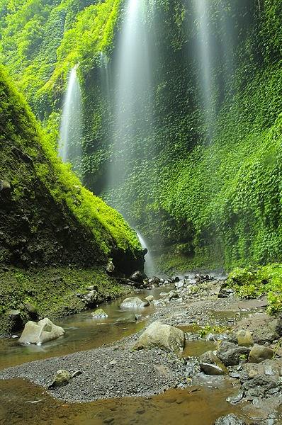 Tempat Wisata Air Terjun Madakaripura Probolinggo