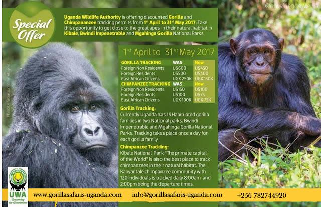 https://www.gorillasafaris-uganda.com/volunteer-in-uganda-safari/