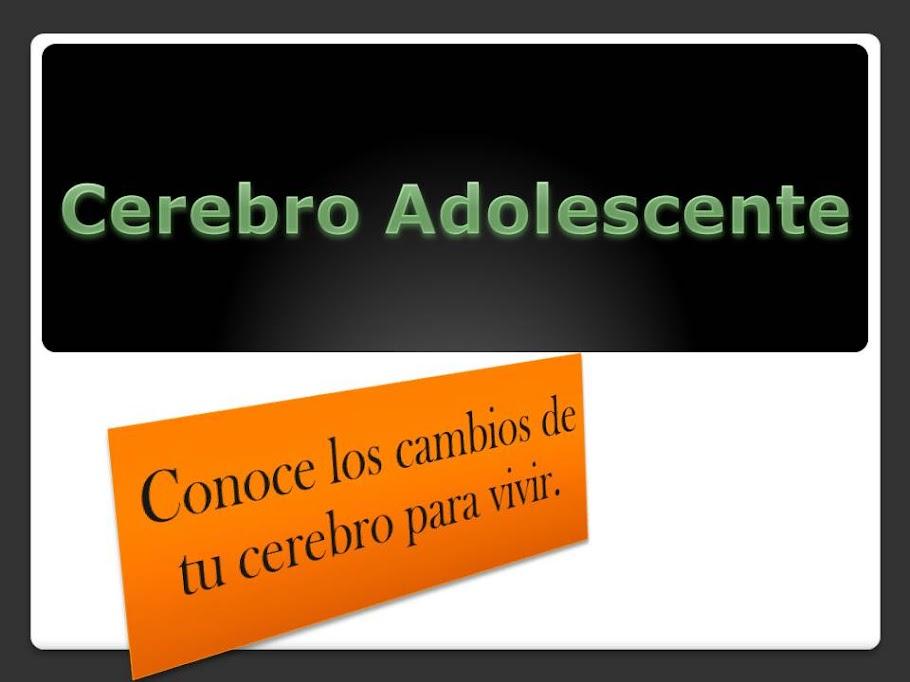 Cerebro Adolescente: Pasos para mejorar el rendimiento académico