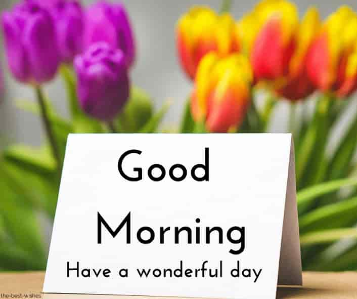 good morning greeting card have a wonderful day