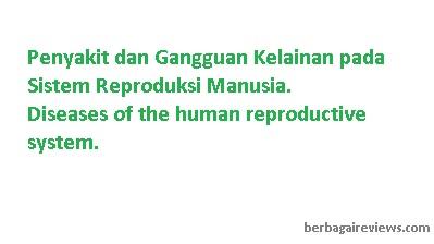 Penyakit dan Gangguan Kelainan pada Sistem Reproduksi Manusia - berbagaireviews.com