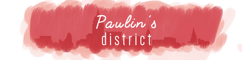 Paulin's District
