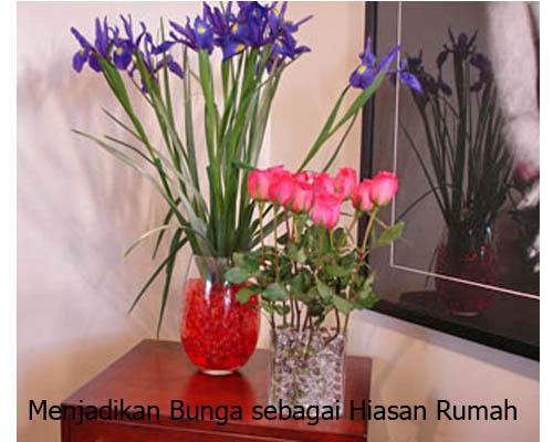 Bunga Sebagai Hiasan Rumah Minimalis