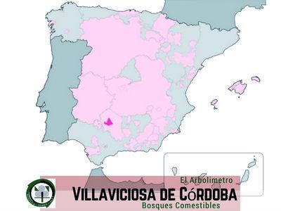 Villaviciosa, Córdoba, Mapa de Localización proyecto El ARBOLÍMETRO