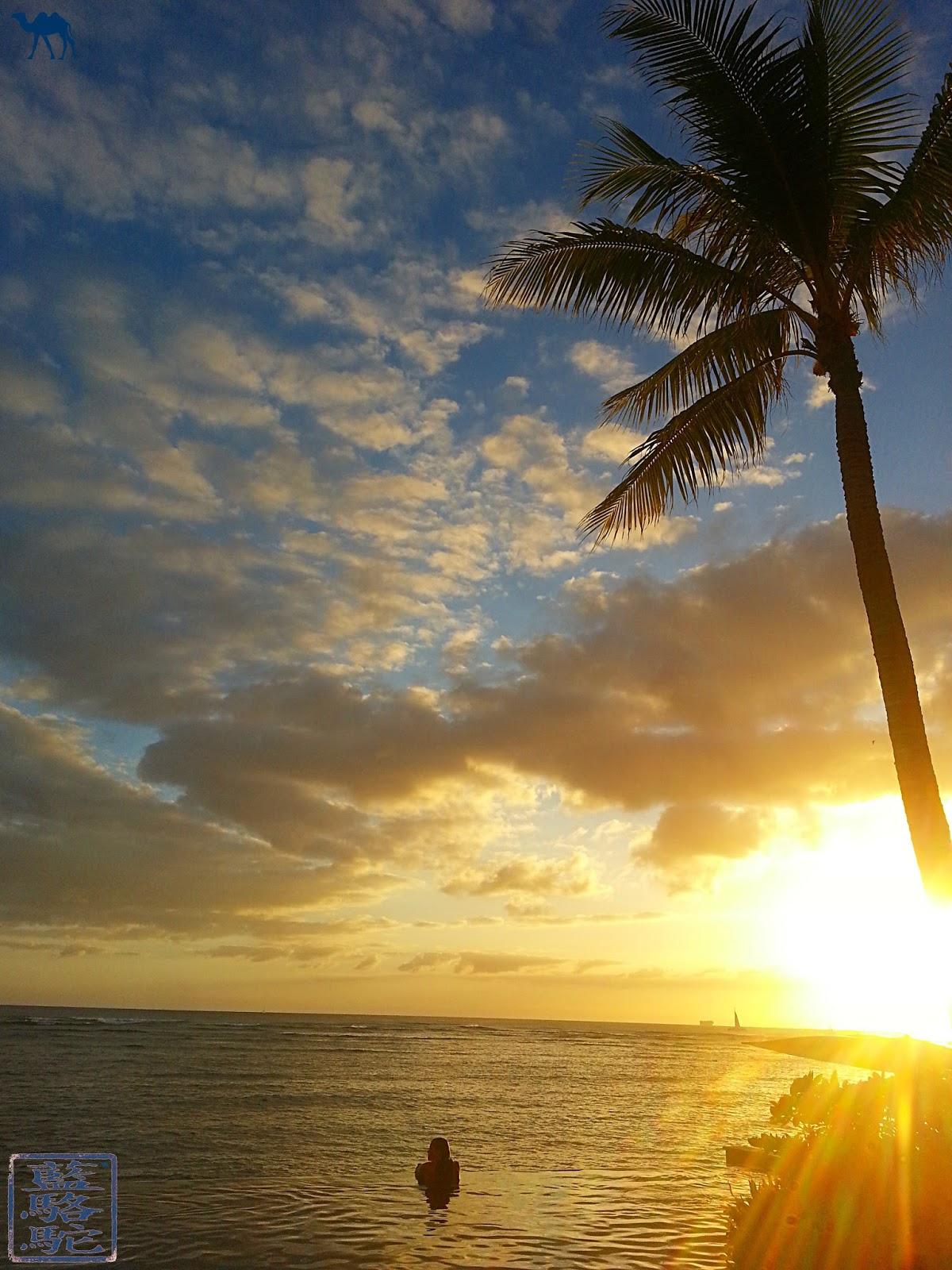 Le Chameau Bleu -Blog Voyage Hawaii - Photo de l'ile d'Hawaii