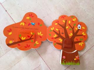 Les saisons de l'arbre - Editions TOURBILLON - L'automne