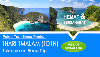 Tour 1 Hari Nusa Penida