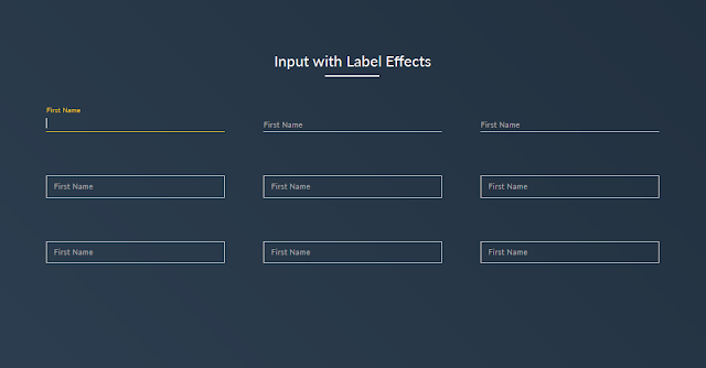 Awesome input focus effects