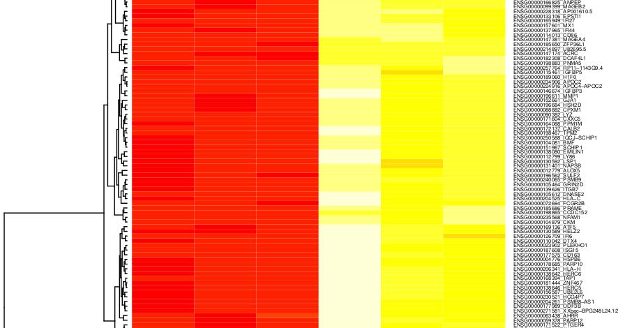 Data analysis step 6: Draw a heatmap from RNA-seq data using R